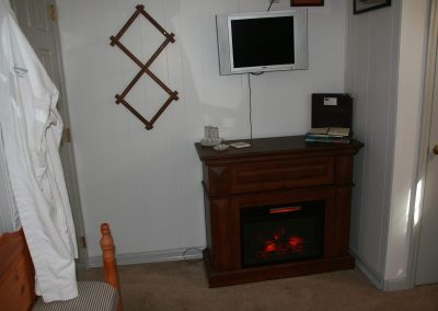 Dahlia Electric Fireplace