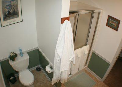 Log Cabin Guest Room En Suite Full View