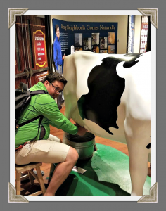 Pat Milking the Turkey Hill Cow