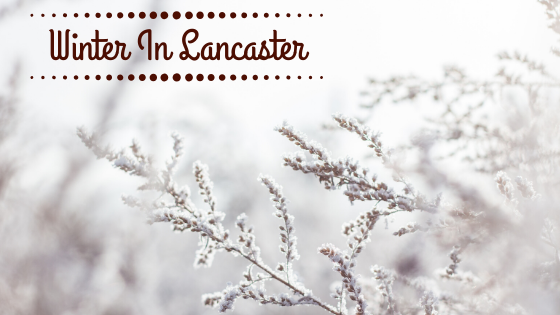 Relax Like You're On Holiday:  Wonderful Things To Do During Winter In Lancaster County, PA