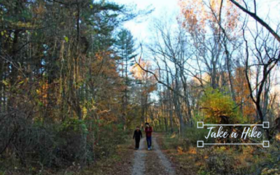 Relax Like You're on Holiday:  Let's Take a Hike
